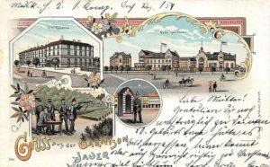 Jawor na starych pocztówkach